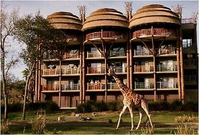 EASTER  DISNEY Animal Kingdom Resort Vacation = 4nts = April 10th to 14th  2021