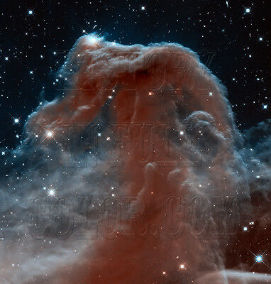 Horsehead Nebula Orion Hubble JPL NASA space telescope photo hs-2013-12-a