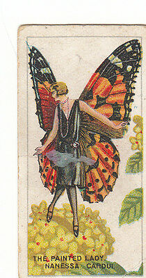 THE PAINTED LADY BUTTERFLY Cigarette/Tobacco Card c1928 by B.A.T. Scarcer