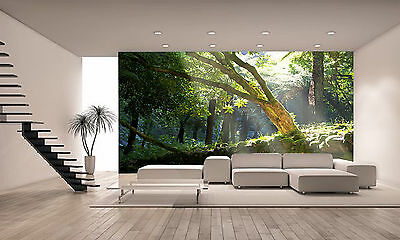Forest with Sunbeams Wall Mural Photo Wallpaper GIANT DECOR Paper Poster