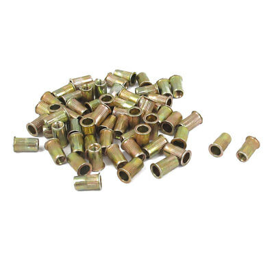 60 Pcs 3mm Thread Dia Zinc Plated Rivet Nut Insert Nutsert Brass Tone