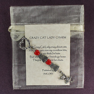 CRAZY CAT LADY CHARM Kitten Kitty Amulet Talisman Hearts Puss Dangler Rhyme Card