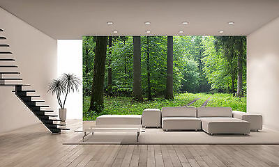 Road Leading Across Forest Wall Mural Photo Wallpaper GIANT DECOR Paper Poster