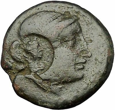 KYME in AEOLIS 300BC Amazon Horse ARTEMIS COUNTERMARK Ancient Greek Coin i52598