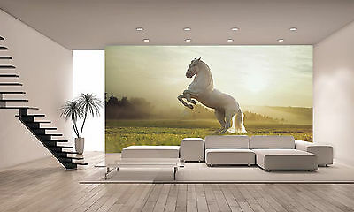 Royal White Horse Wall Mural Photo Wallpaper GIANT DECOR Paper Poster Free Paste