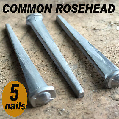 "2"" COMMON ROSEHEAD NAILS ~ Rustic-Vintage-Authentic Cut Nail   ~ QTY (5)"