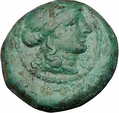 Sardes in Lydia 133BC Ancient Greek Coin Apollo father of Asclepius Club i53263