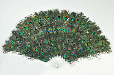 "Peacock Eyes Double sizes Feathers  Fans 28"" x 49"" Decorative and perform"