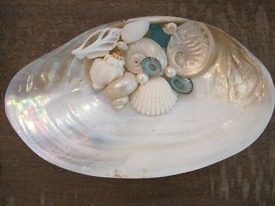 Handmade FW Clam Soap Dish With Shells, Soap Dishes, Bathroom Decor, Kitchen