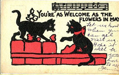 Old illustrated humorous / romance postcard two black cats in love 1908