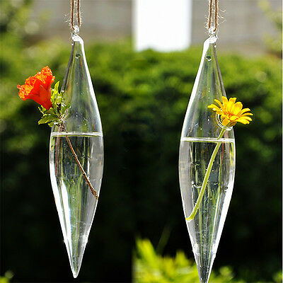 Cute Glass Olive Shape 1 Hole Flower Plant Hanging Vase Container Home Decor
