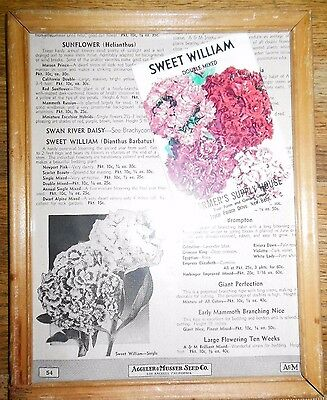 Vintage SEED PACKAGE 1941 ADV Farmers Supply NC Framed