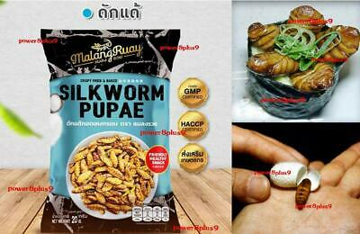Insect Small Cricket Fried Food Meal Farm Cheese BBQ Seaweed Thai Snack 2get1