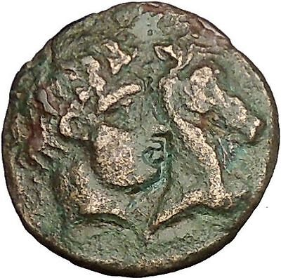 GYRTON in THESSALY 400BC Gyrtona Horse Authentic Ancient Greek Coin i53947