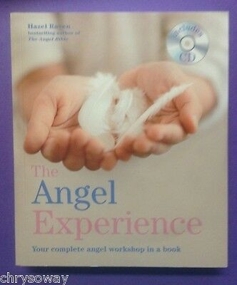 THE ANGEL EXPERIENCE 9781841813851 Hazel Raven