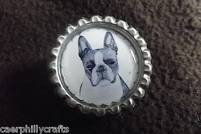 Boston Terrier Dog Show Ring Clip by Curiosity Crafts