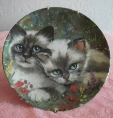 """Collectable  Cat Plate Cats Collection """"country Cat"""" With Plate Hanger"""