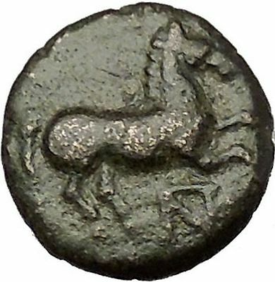 Maroneia in Thrace 400BC Original Ancient Greek Coin Horse Vine Grapes  i54138