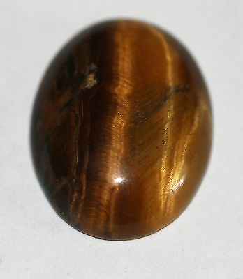 Natural golden Tiger Eye Cabochon 16 x 12mm  TE - 03