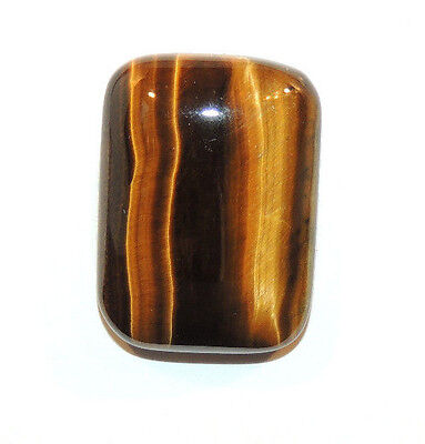 Tiger's Eye 18x25mm with 7mm dome Cabochon From South Africa (10043)