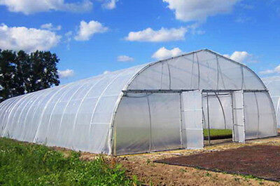Greenhouse White Plastic Clear 5 Year 5.5 Mil(0.14mm) Poly Film -Various Lengths