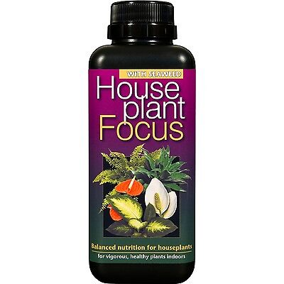 houseplant focus 100ml feed food plants growth technology FREE PIPPET