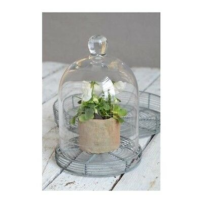 Small Glass Display Cover Cloche Bell Jar Dome Centrepiece 20 cm w/cutting