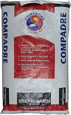 Compadre Zoysia Grass Seed - 1 Lb. (On Backorder)