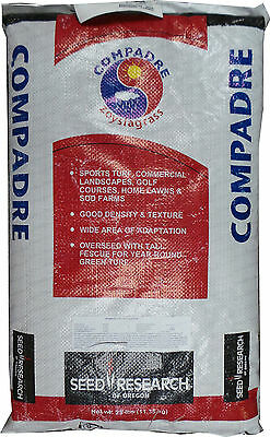 (On Backorder) SeedRanch Compadre Zoysia Grass Seed - 25 Lbs.