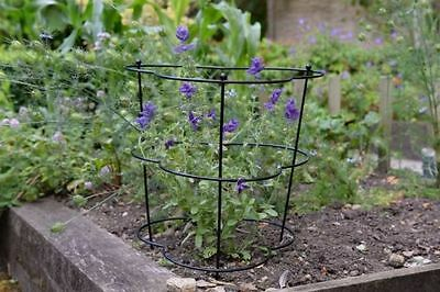 Gro-Cone Plant Support Stakes 38 x 55cm - Pack of 2 Versatile Durable