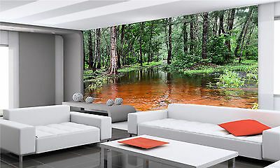 Landscape in Orissa Wall Mural Photo Wallpaper GIANT WALL DECOR PAPER POSTER