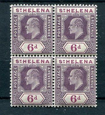 St Helena 1908-11 6d on chalk paper SG67 MNH block of 4 cat £180