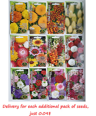 Flower seeds Zinnia Phlox Daisy Sunflower Borage Cornflower Cress Verbena Pansy