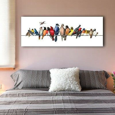 30×80×3cm Colorful Birds Canvas Prints Wall Art Kids Home Decor Framed Painting