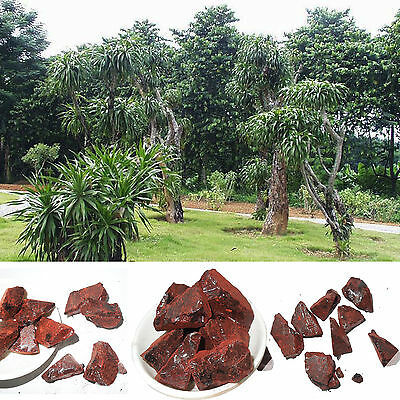 5oz Dragon's Blood Resin Incense 5oz 100% Natural Wild Harvested w/charcoal XW