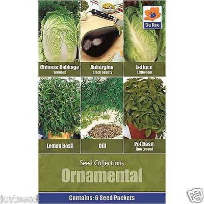 Ornamental Seed Collection 6 types Dill - Basil - Aubergine - Lettuce - Chinese