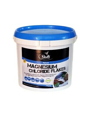 4kg Magnesium Chloride Flakes Bath Salt Naturally Harvested from the Dead Sea