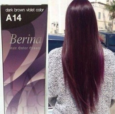 Berina Dark Brown Violet Color Hair Cream Permanent Super Hair Dye NO. A14.