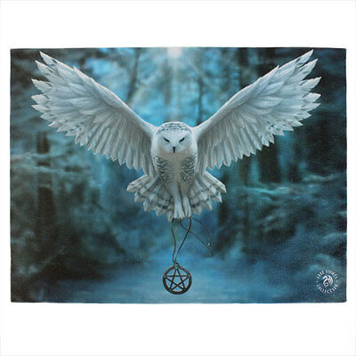 Anne Stokes Gothic Wicca Owl Awake Your Magic Canvas Print 40cm x 30cm