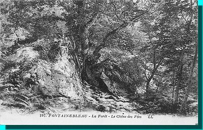 CPA- FONTAINEBLEAU La Forest the oak of fairy
