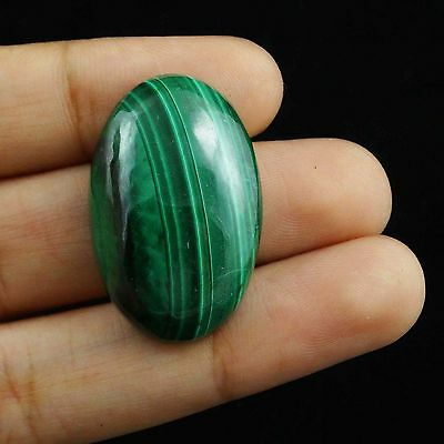 46.30 Cts Excellent Superb Oval Green MALACHITE Cabochon Magnificent Cabochon