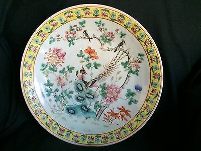 "Stunning 13.5"" Antique Chinese Famille Rose Charger Bowl Bird Hand Painted China"