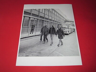 Creedence Clearwater Revival CCR  10x8 inch lab-printed glossy photo P/5053