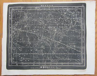 Goldbach: Rare Black and White Celestial Map Aries Constellation - 1799