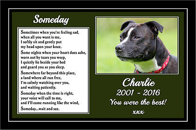 "Pet Dog Personalised Photo Memorial Gift Mounted Poem 9"" x 6"" Print - Staffy"
