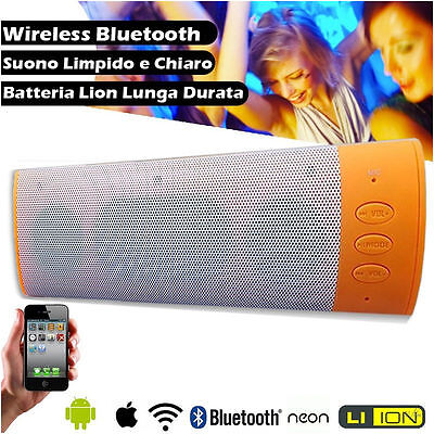Cassa Speaker Portatile Wireless Bluetooth con radio fm Alta Potenza