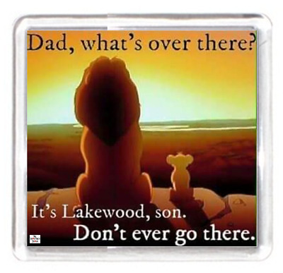 Father Daddy Dad Day Happy Lion Cub View Scenery Quotes Fridge Magnet