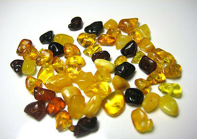 Holed Natural Baltic Amber Loose beads about 55 beads (6gr) +1 screw klasp.