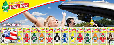 Little Trees, Home, Air fresheners, Car fresheners, CARDED, Made in USA