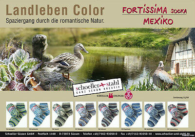 8cc575d0842c05 Fortissima Sockina color Mexiko Country-Landleben - 4fädig  (59